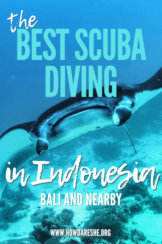 "Text ""the best scuba diving in Indonesia, Bali and nearby"" overlayed on underwater image of manta ray swimming from front"