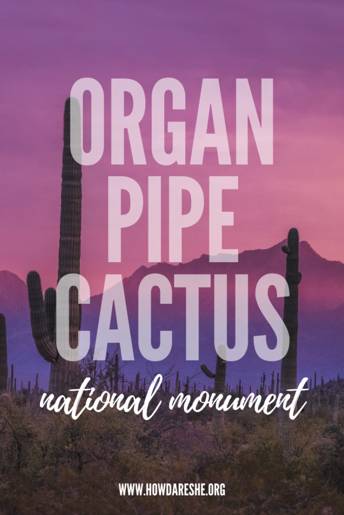 "Text ""Organ Pipe Cactus National Monument"" overlayed on pink and purple sunset, silhouetting tall saguaro cacti and mountains in Organ Pipe"