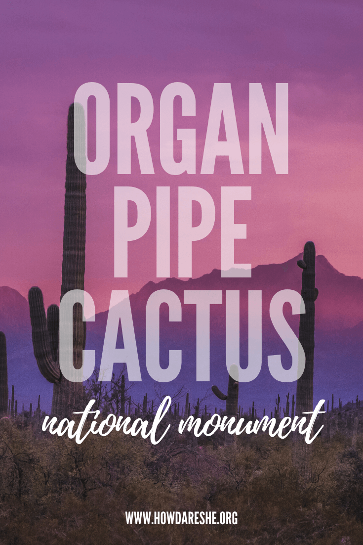 Visiting Organ Pipe Cactus National Monument in Southern Arizona