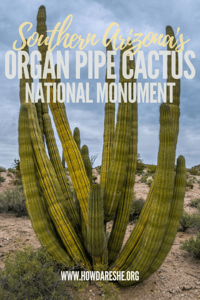 "Text ""Southern Arizona's Organ Pipe Cactus National Monument"" overlayed on image of large organ pipe cactus with many arms sticking up"